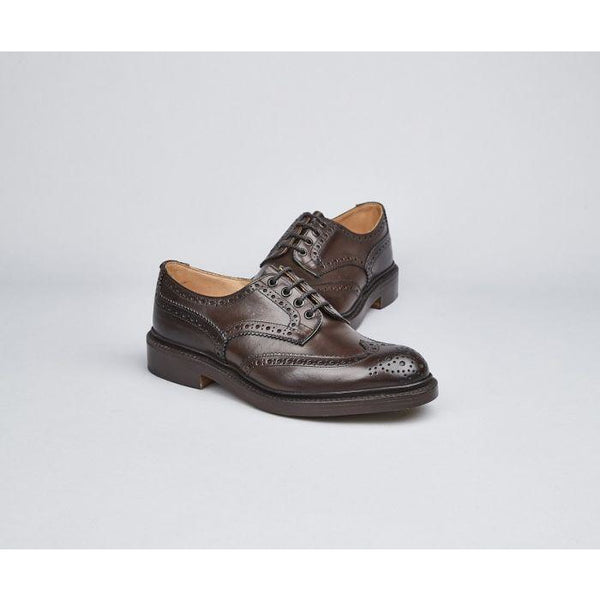 Bourton Country Shoe in Espresso Burnished - croftonandhall