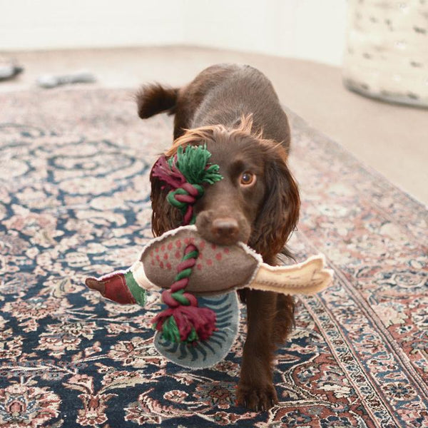 Pheasant Rope Dog Toy - croftonandhall