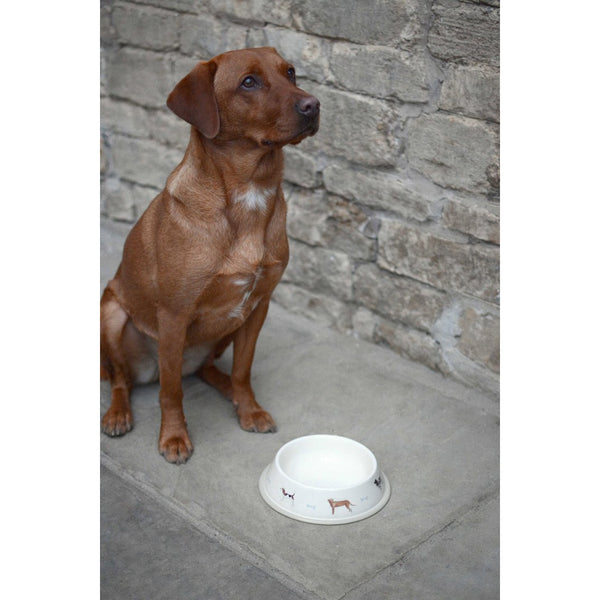 Woof Dog Bowl - Large - croftonandhall