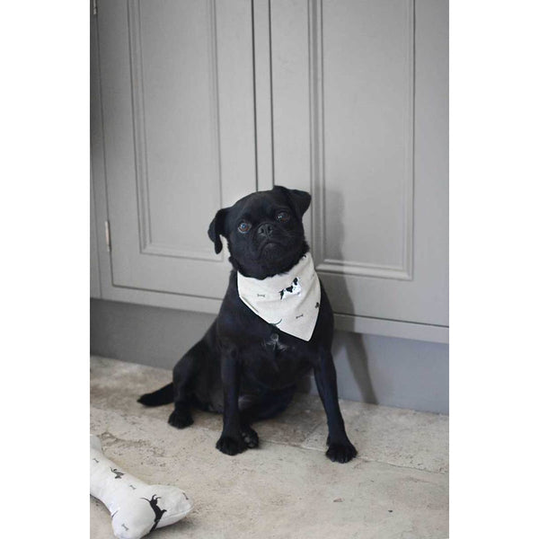 Woof Neckerchief - Small - croftonandhall
