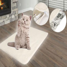 Load image into Gallery viewer, Heated Cat Bed