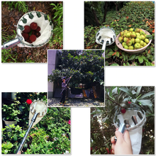 Load image into Gallery viewer, Fruit Picker