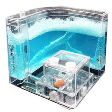 Load image into Gallery viewer, Ant Farm Box