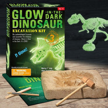 Load image into Gallery viewer, Glowing-Dino Excavation Kit