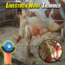 Load image into Gallery viewer, Livestock Hoof Trimmer