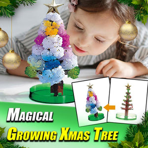 Magical Growing Xmas Tree
