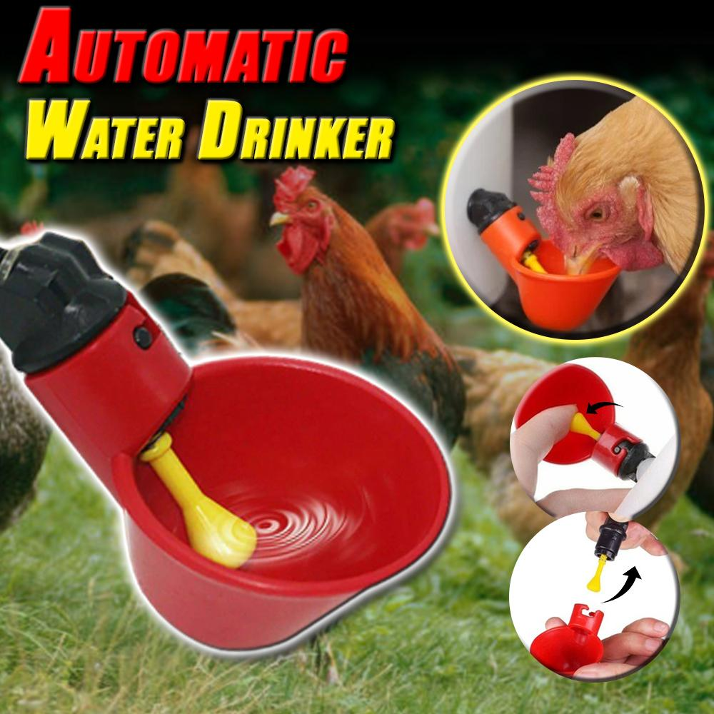 Automatic Water Drinker