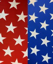 Load image into Gallery viewer, American Unity