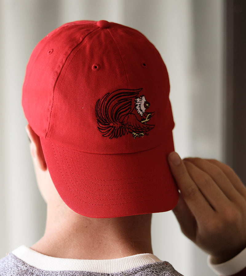 Gamecock™ Dad Cap