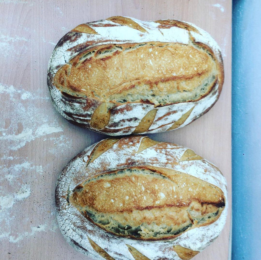 LARGE WHITE SOURDOUGH