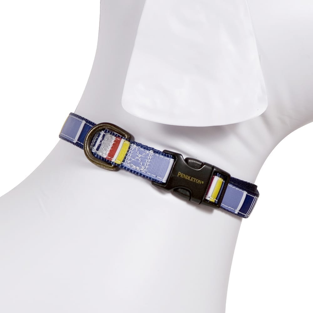 National Park Hiker Dog Collar - Yosemite