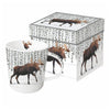 Wilderness Moose - Mug In Gift Box