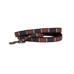 National Park Hiker Leash - Acadia