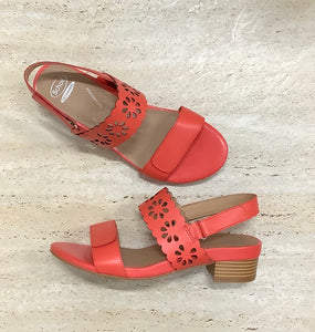 Scholl Gigi Watermelon - Emelda's Shoes