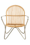 Rattan Nickel Framed Accent Chair | Pols Potten Timor | DutchFurniture.com
