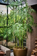 Faux Palm Tree | Silk-ka Palm | DutchFurniture.com