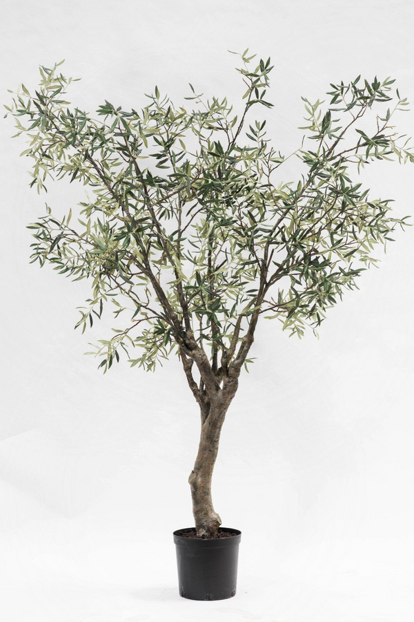 Faux Olive Tree | Silk-ka Olive | DutchFurniture.com