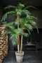 Faux Palm Tree | Silk-ka Phoenix | DutchFurniture.com