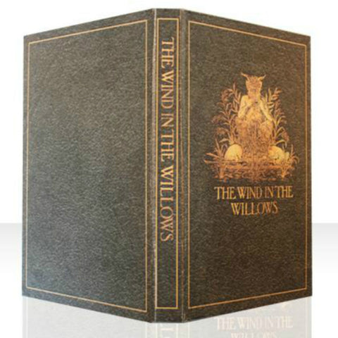 WIND IN THE WILLOWS BOOK COVER CASE for Any Device