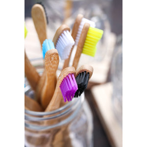 Colourful Bamboo Toothbrushes