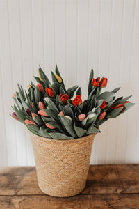 Bouquet de Tulipes Canadiennes