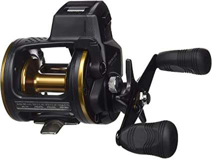Daiwa Sealine Line Counter Baitcast Reel