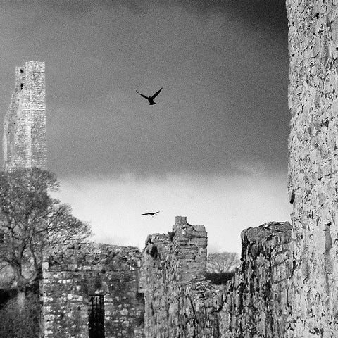 Trim Castle, Co. Meath.