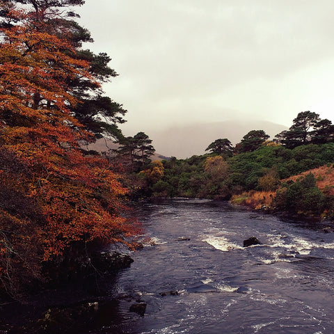 Connemara, Co. Galway.