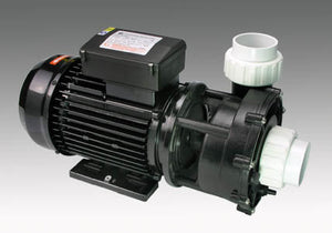 WP 250-I.       1 speed Main spa pool pump