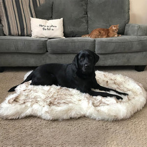 Faux Fur Plush Pet Cushion