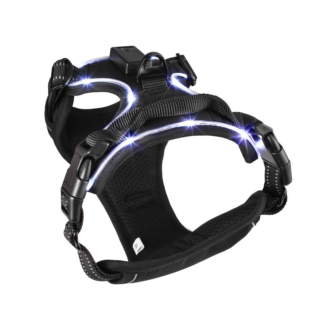 Black adjustable Heavy Duty Padded Control Harness w/chest strap and USB rechargeable LED