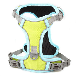 Breathable Mesh Small Dog/Cat Harness Vest and Leash Set