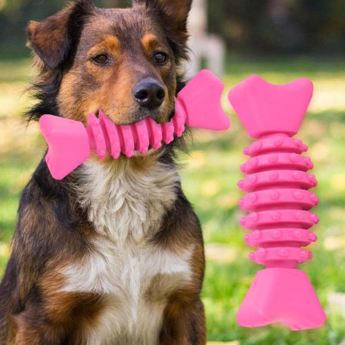 Pet Teeth Cleaning Chew Toy