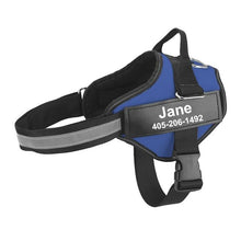 Load image into Gallery viewer, No-Pull Custom Dog Harness Innovation Dog XS Blue