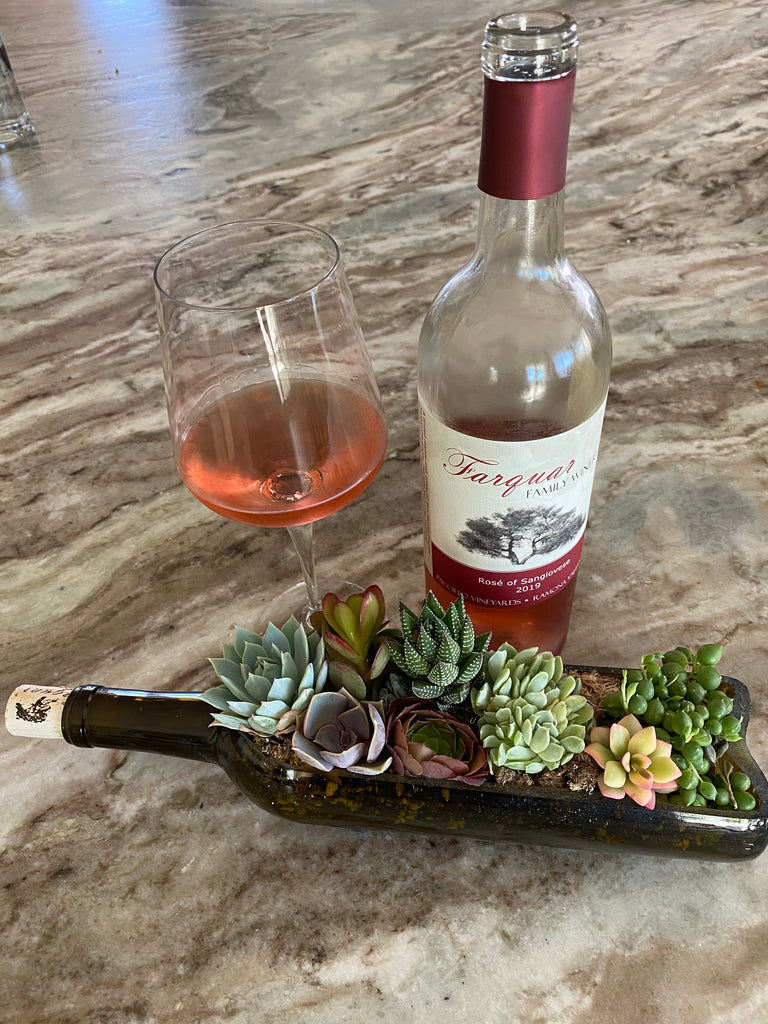 Wine Bottle with Plants
