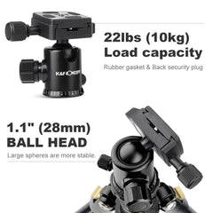 K&F Concept 62'' DSLR Tripod, Lightweight and Compact Aluminum Camera Tripod with 360 Panorama Ball Head Quick Release Plate for Travel and Work TM2324