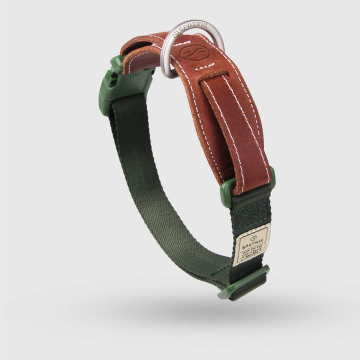 Dog Collar<br>Green