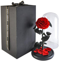 SANRAN Preserved Flower Rose Decoration Never Withered Handmade Fresh Flower Rose with Beautiful Creative Heart Design Gift for Valentine's Day Christmas Anniversary Birthday Thanksgiving (Carnation)