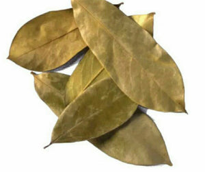 Soursop Leaves