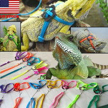Load image into Gallery viewer, Reptile harness and lead