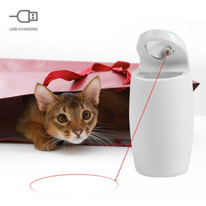 Automatic Laser Pointer