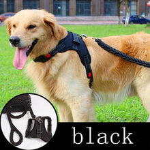 Load image into Gallery viewer, Big Dog Leash And Collar