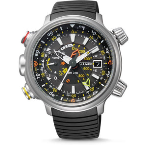 Citizen Eco Drive BN4021-02E