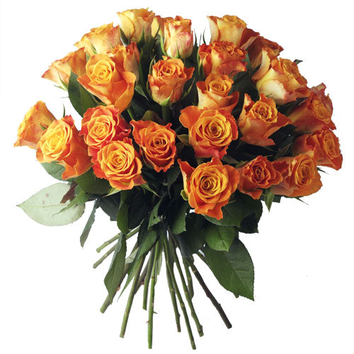 Bouquet de roses oranges