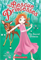 Secret Promise (Rescue Princesses 1)