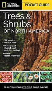 National Geographic Pocket Guide to Trees and Shrubs of North America