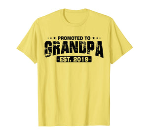 Mens Men Humor Promoted To Grandpa EST 2019 Fathers Day T-Shirt