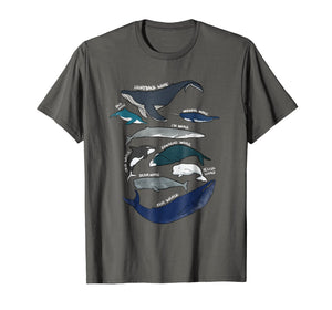 9 Types of Whales Shirt - Whale Breeds Species - Whale Lover
