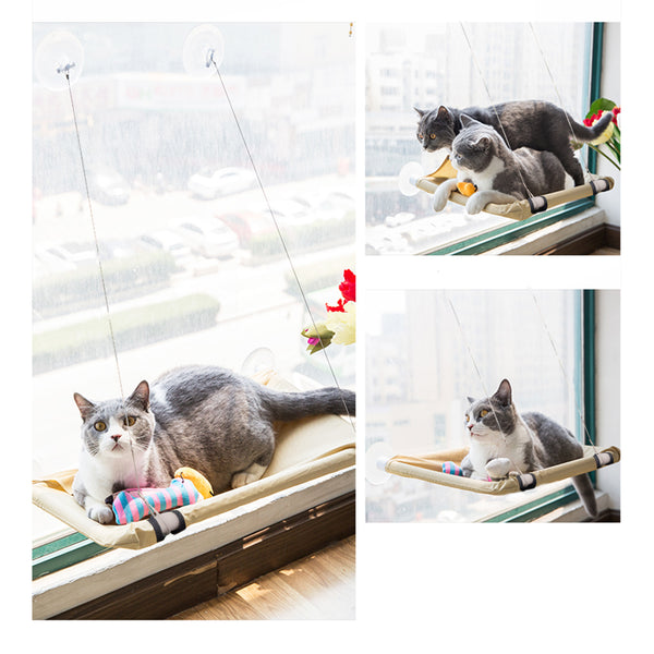 PAWISE Cat Window Perch Kitty Hammock Window Seat Cat Resting Sunny Seat Window Mounted Cat Bed