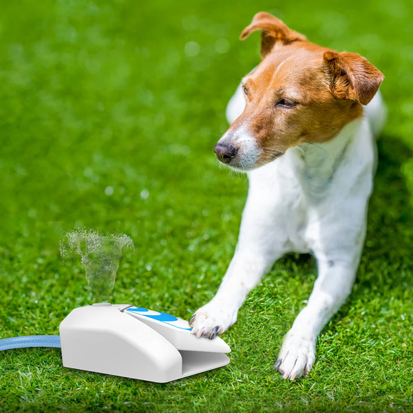 Pet Garden Fountain (Step Pedal)
